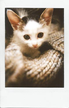 fuji instax sample 5